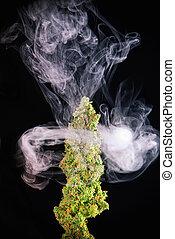 macro, strain), marijuana, detalhe, cannabis, único, fenda, broto, (green