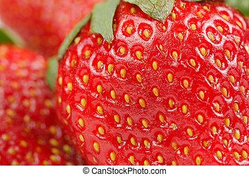macro, strawbery, rojo