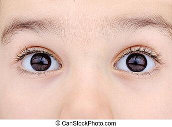 macro, tiro, de, criança, olhos