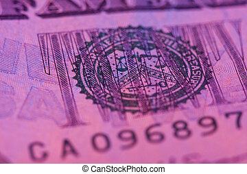 macro twenty dollar bill with pink tint