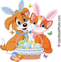 macska, húsvét, kutya