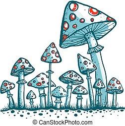 maculato, funghi, toadstool