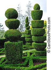 madère, décoratif, funchal, botanique, parc, vert, jardin