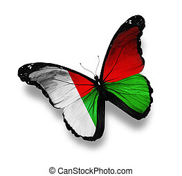 Madagascar flag butterfly, isolated on white