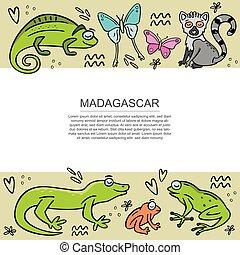 madagascar, jogo, ilustração, animals., vetorial, modelo, desenhado, mão, bandeira