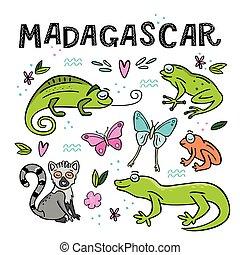 madagascar, jogo, ilustração, mão, vetorial, desenhado, animals.