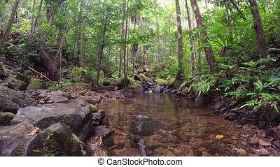 Madagascar landscape with small creek - Beatiful landscape...