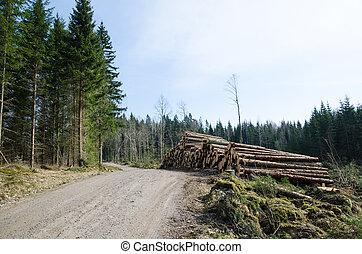 madeira, à margem estrada