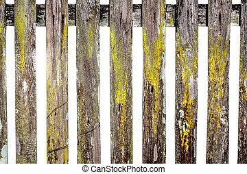 madeira, antigas, jardim, cerca