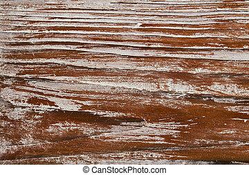 madeira, antigas, textura madeira, fundo, grão, tábua, prancha