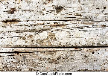 madeira, antigas, texture., fundo