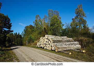 madeira, aspen, pilha, à margem estrada