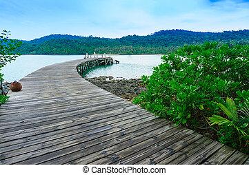 madeira, bote, vista, porto, seascape