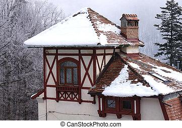 madeira, chalé, Inverno
