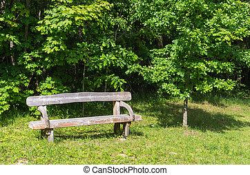 madeira, cidade, antigas, banco parque