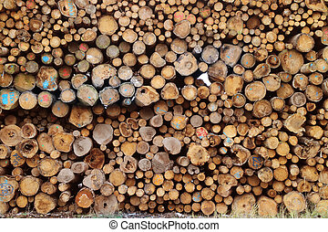 madeira, combustão