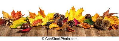 madeira, folhas, isolado, outono, estúdio, tabela