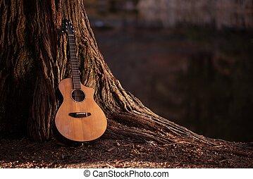 madeira, guitarra acústica