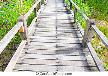 madeira,  mangrove, passagem