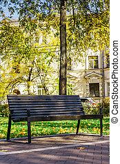 madeira, parque cidade, quieto, banco