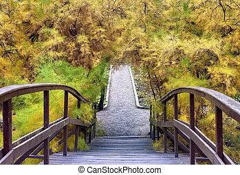 madeira, parque, ponte, outono