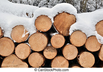 madeira, pilha, neve