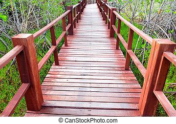 madeira, ponte, passagem, campo