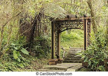 madeira, portão, PORTA