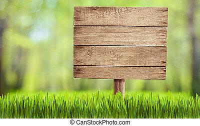 madeira, sinal, em, verão, floresta, parque, ou, jardim
