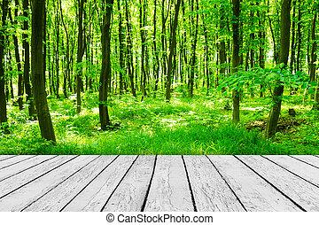 madeira, textured, fundos, um quarto, interior, ligado, a, floresta, fundos