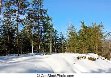 madeiras, inverno