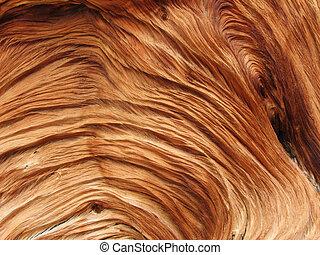 madera, arremolinado, textura