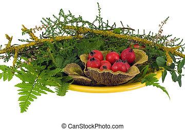 madera, bayas, espino, plantas