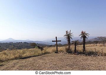 madera, cruz, en, cumbre, con, tres, áloe planta, retratar, crucifixión