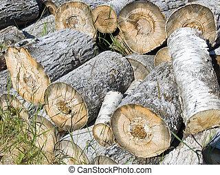 madera de fuego