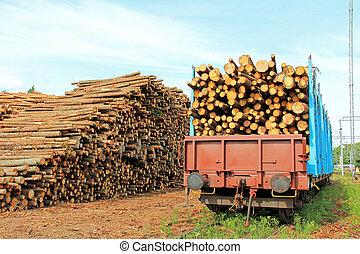 madera, ferrocarril, estación