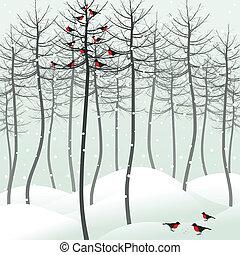 madera, pájaro