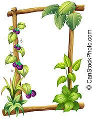 madera, plantas, hecho, marco, vid