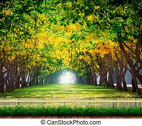 madera, terraza, con, fresco, y, verde, hermoso, de, verano,...