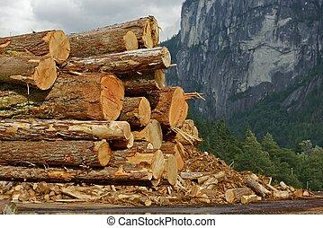 madera, troncos, acción, pila