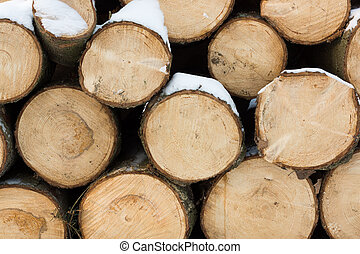 madera, troncos, nieve