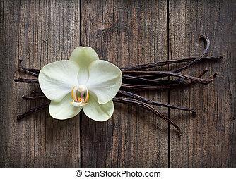 madera, vainilla, flor, palos, plano de fondo