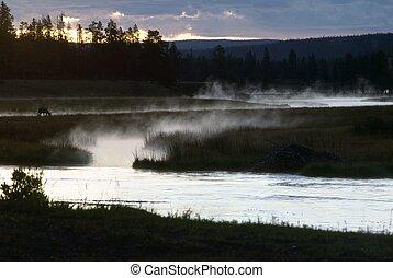 Madison River, Yellowstone National Park, Wyoming