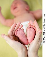 madre, bebé, pies, manos de valor en cartera, pequeño