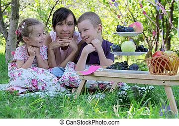 madre, con, dos niños, teniendo, verano, picnic