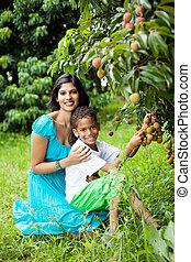 madre e hijo, escoger, lychees