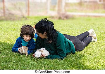 madre e hijo, teniendo, conversación, en, jardín