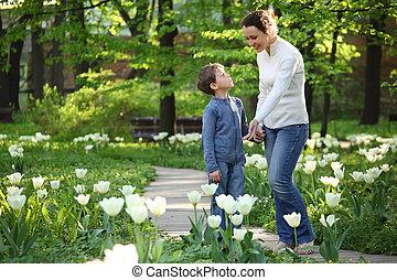 madre, exposiciones, a, hijo, florecer, blanco, tulipanes, en, jardín