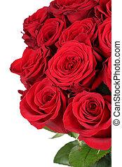 madre, giorno valentine, rose, compleanno, o, mazzo