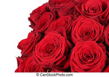madre, giorno valentine, rose, compleanno, o, rosso, mazzo